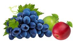 Isolerade äpplen och druvor Arkivbild