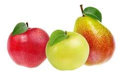 Isolerade äpplen och päron Royaltyfri Fotografi