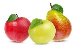 Isolerade äpplen och päron Arkivfoto