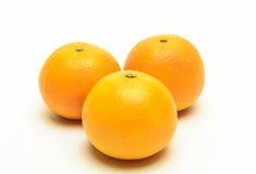 isolerade apelsiner Royaltyfria Bilder