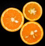 isolerade apelsiner Fotografering för Bildbyråer