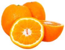 isolerade apelsiner arkivbild