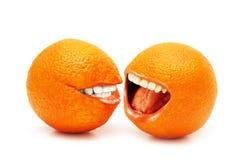 isolerade apelsiner två Arkivbild