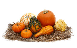 Isolerade Autumn Decoration av Pumkins squash och kalebasser Royaltyfri Bild