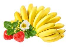 Isolerade bananer och jordgubbar Fotografering för Bildbyråer