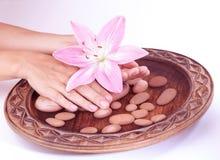 isolerade begreppshänder manicure brunnsortwhite Arkivbilder
