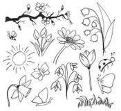 Isolerade blommor för vårfärgpulverteckning Royaltyfria Bilder