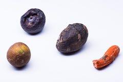 Isolerade bortskämda frukter Fotografering för Bildbyråer