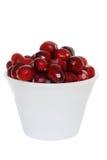 isolerade bunkecranberries royaltyfria bilder
