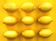 isolerade citroner Arkivbild