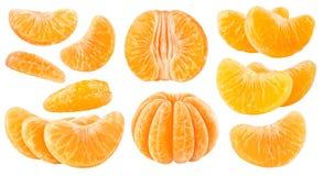 Isolerade citrussegment royaltyfri foto
