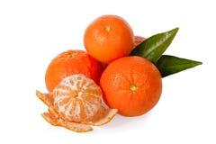 Isolerade Clementines Fotografering för Bildbyråer