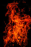 isolerade flammor Arkivfoto