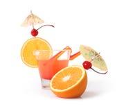 isolerade frukter Arkivbild
