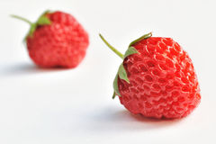 Isolerade frukter - jordgubbar Royaltyfri Bild