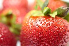 Isolerade frukter, jordgubbar Arkivfoton