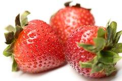 Isolerade frukter, jordgubbar Royaltyfri Foto