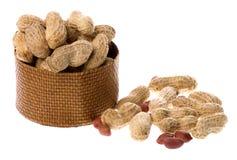 isolerade groundnuts Royaltyfri Foto