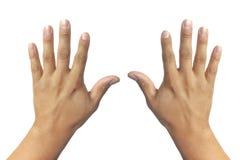 Isolerade händer i vit bakgrund arkivbild