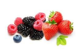 Isolerade hallon, jordgubbe och blåbär Royaltyfri Foto