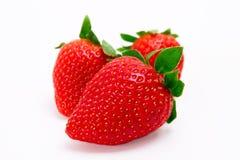 isolerade jordgubbar Royaltyfri Foto