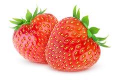 isolerade jordgubbar Arkivbild