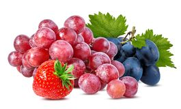 Isolerade jordgubbe och druvor Royaltyfria Foton