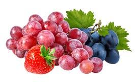 Isolerade jordgubbe och druvor Royaltyfri Bild
