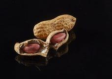isolerade jordnötter fotografering för bildbyråer