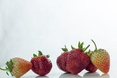 Isolerade körsbärsrött rött för jordgubbe på den vita isolaten, den främre sikten whit Royaltyfri Foto
