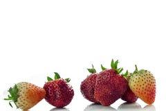 Isolerade körsbärsrött rött för jordgubbe på den vita isolaten, den främre sikten whit Royaltyfri Fotografi