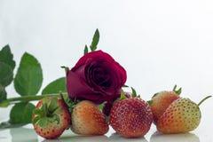Isolerade körsbärsrött rött för jordgubbe på den vita isolaten, den främre sikten whit Arkivfoton