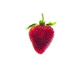 Isolerade körsbärsrött rött för jordgubbe på den vita isolaten, den främre sikten whit Fotografering för Bildbyråer