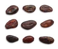 Isolerade kakaob?nor royaltyfria bilder
