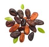 Isolerade kakaob?nor royaltyfri bild