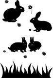 Isolerade kaniner stock illustrationer