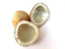isolerade kokosnötter Royaltyfri Fotografi