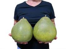 Isolerade kvinnliga pomelos för innehav två royaltyfri foto