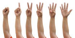 Isolerade kvinnlighänder hand för snabb bana som räknar noll till fem Royaltyfri Foto