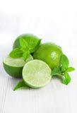 Isolerade limefrukt och mintkaramell royaltyfri bild