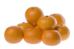 isolerade mandarinapelsiner Arkivbilder