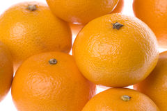 isolerade mandarinapelsiner Arkivbild