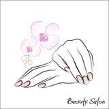 isolerade manicuren för bakgrundsomsorgskvinnlign spikar den händer white stock illustrationer
