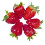 Isolerade nya jordgubbar med en vit bakgrund fotografering för bildbyråer
