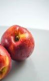 Isolerade nya organiska persikor Arkivbild