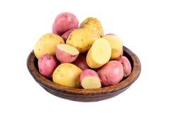 Isolerade nya potatisar Arkivbild