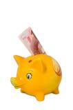 Piggy packa ihop med pengar Arkivbilder