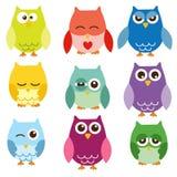 Isolerade owls Arkivbilder
