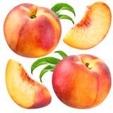 Isolerade persika och skiva. Samling på vit bakgrund Fotografering för Bildbyråer