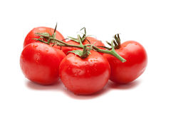 isolerade saftiga tomater Arkivbild